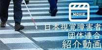 日本視覚障害者団体連合動画ページに移動します